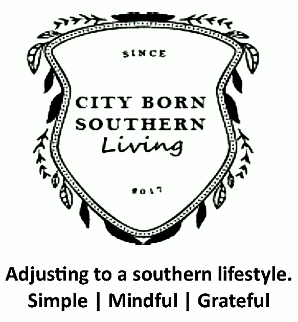 City Born Southern Living
